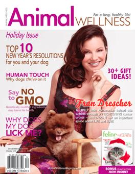 Animal Wellness magazine cover