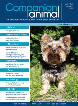 Companion Animal magazine cover