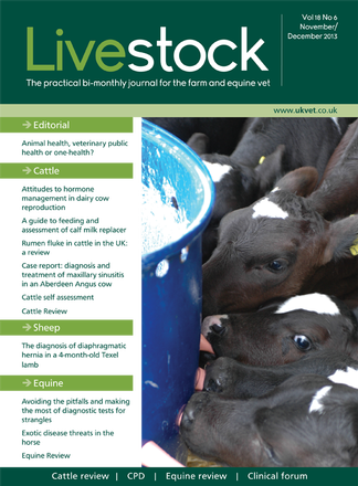 Livestock Magazine Subscription Isubscribe Co Uk