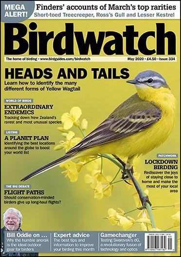 Birdwatch magazine cover