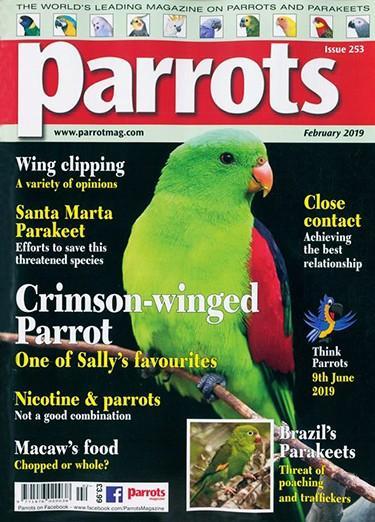Parrots magazine cover