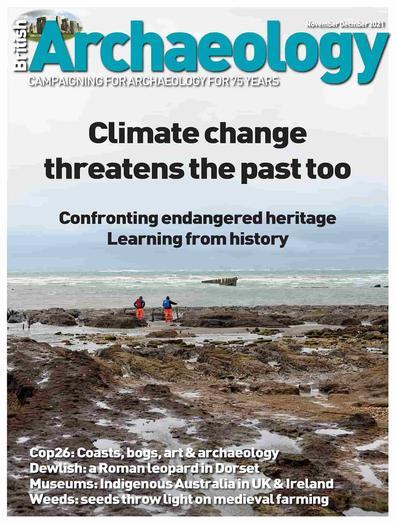 British Archaeology magazine cover