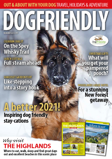DogFriendly magazine cover