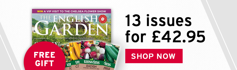 The English Garden Magazine Subscription. 13 issues for £42.95. Free Gift